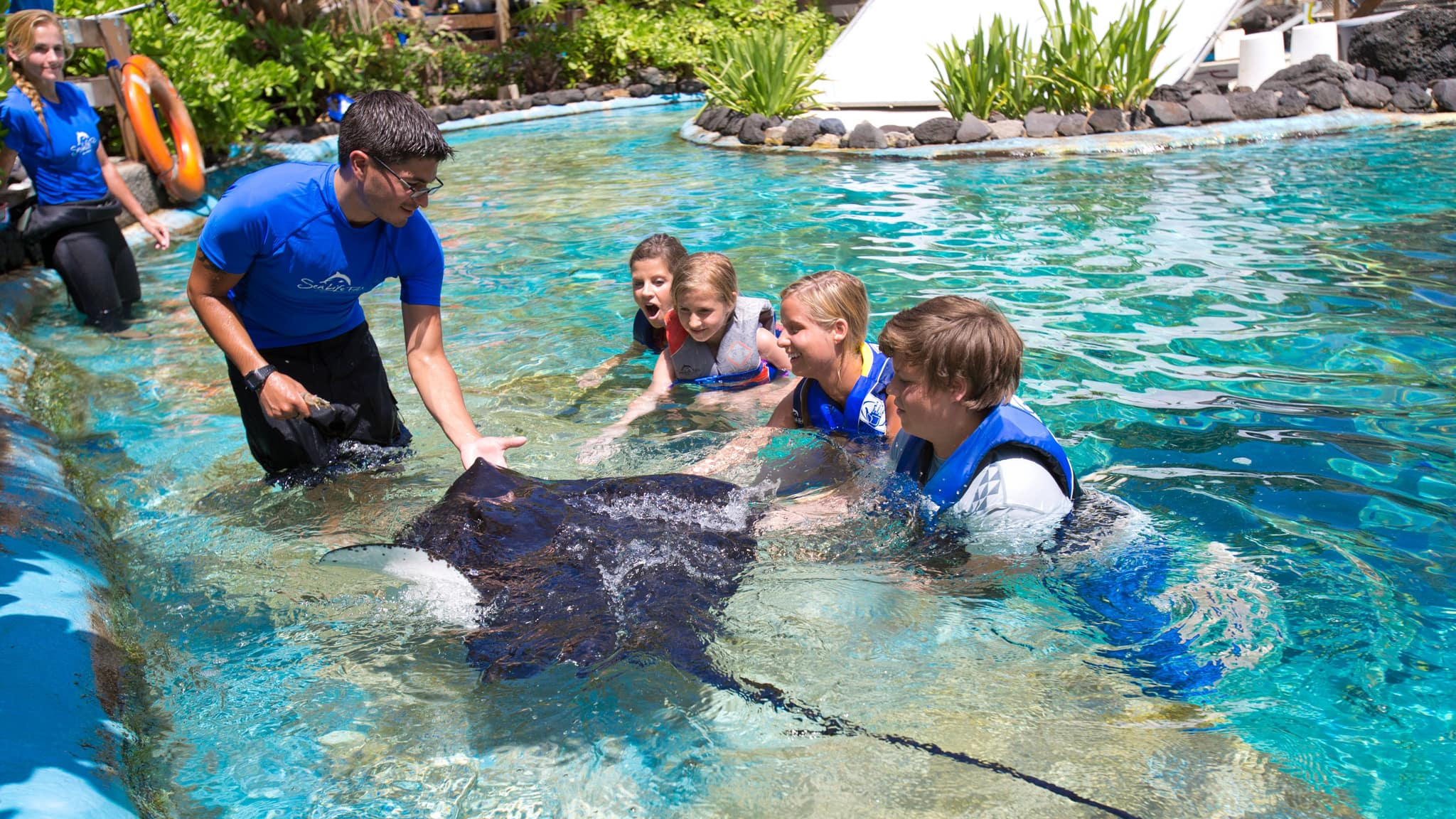 In a pool at a marine park, 4 kids look on as a guide interacts with a manta ray