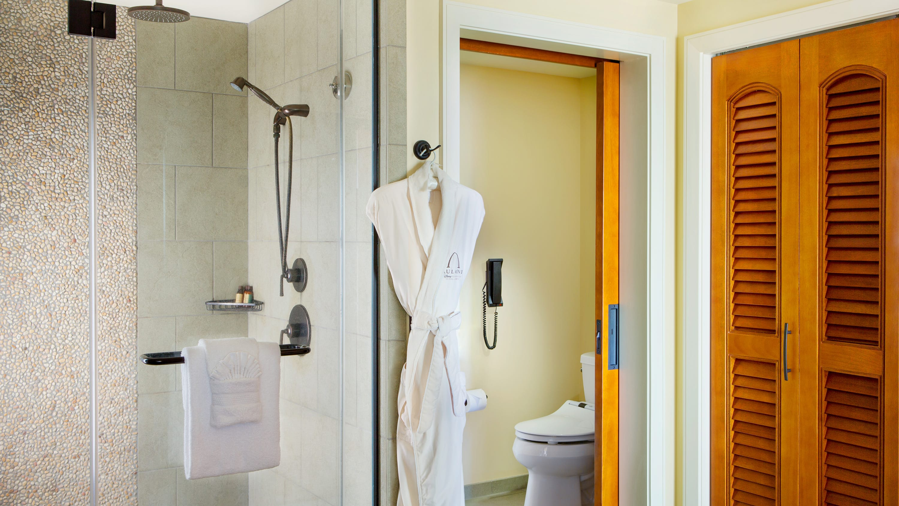 A bathrobe and a towel hang next to a shower near a toilet