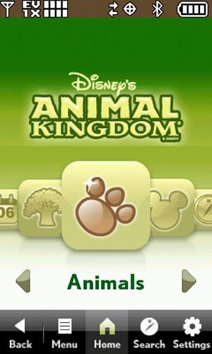 Mobile Magic at Disney's Animal Kingdom