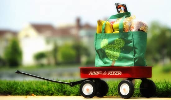 Disney Vacation Club: Grocery Delivery
