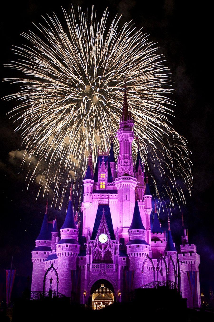 Fireworks at the Magic Kingdom