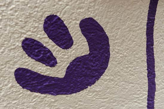 Where at Disney Parks Can You Find This Footprint?