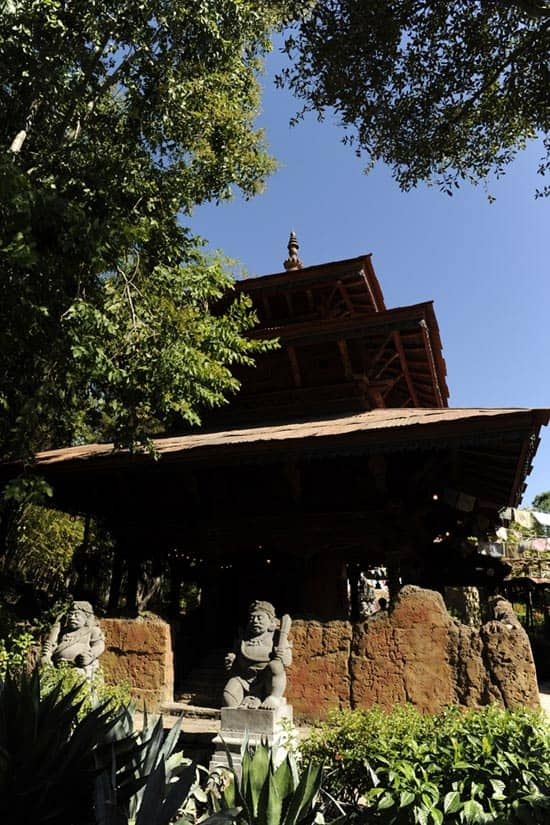Expedition Everest in the Asia Area of Disney's Animal Kingdom Theme Park