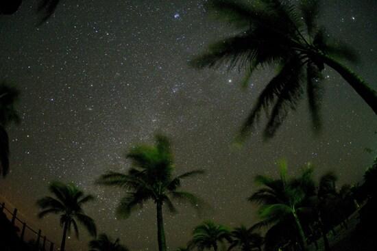 Star Show at Castaway Cay, By: David Roark