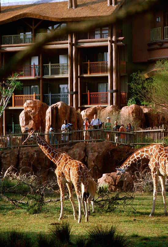 This Day In Disney History: Disney's Animal Kingdom Lodge Turns 10