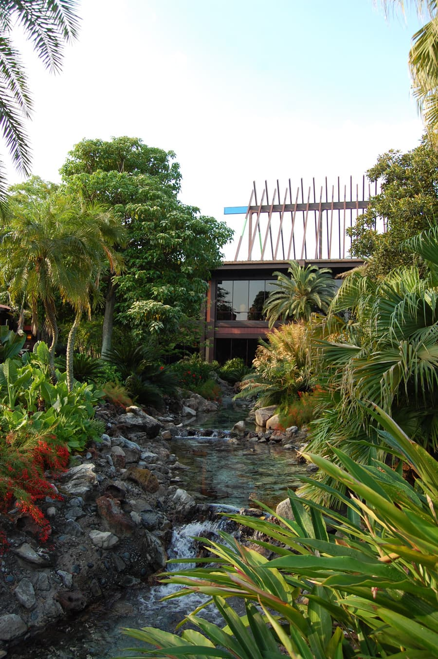Kukui Nut Tree at Disney's Polynesian Resort