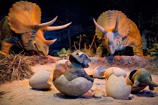 Primeval World Diorama at Disneyland Park
