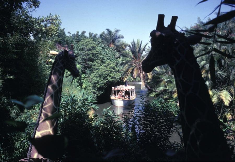 Caption This Vintage Jungle Cruise At Disneyland Park Disney Parks Blog
