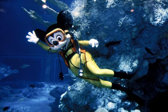 Caption This: Mickey Mouse Takes a Dip