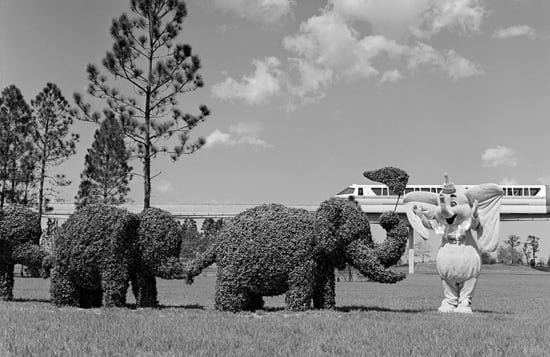 Caption This: A Pack of Disney Pachyderms