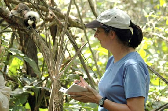Anne Savage of Disney's Animal Kingdom Nominated for World's Leading Animal Conservation Award