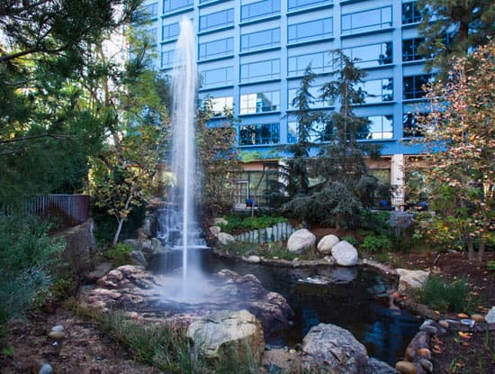 Geyser at the Disneyland Hotel