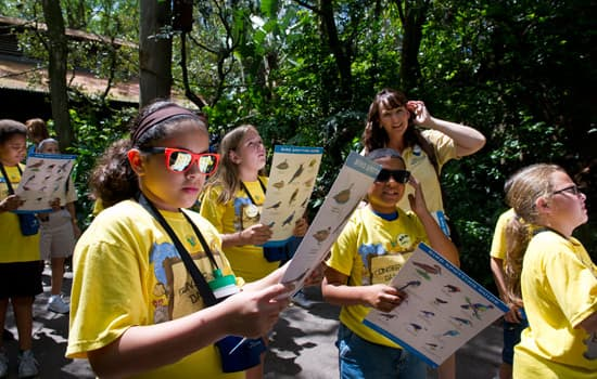 Central Florida Kids Connect with Nature During a Special Day Camp at the Walt Disney World Resort