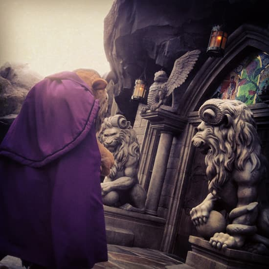 The Beast in Front of His Castle in New Fantasyland
