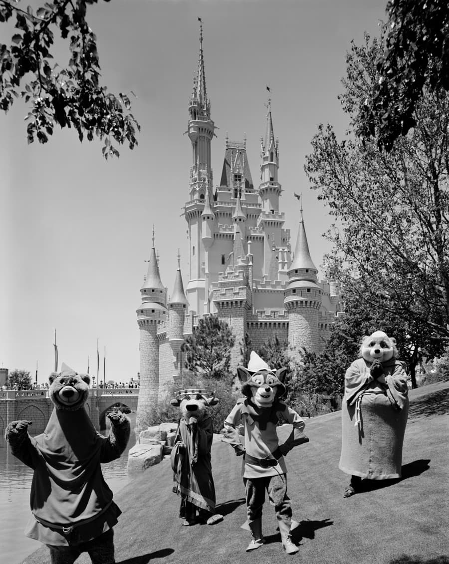 Vintage Walt Disney World Robin Hood And Friends Visit Magic