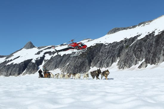 Try Your Hand at Dog Sledding With Adventures by Disney Experiences on a Disney Cruise to Alaska