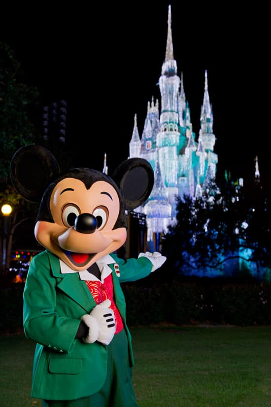 Cinderella Castle During Mickey's Very Merry Christmas Party at Magic Kingdom Park