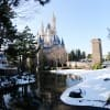 Four Inches of Snow Fell at Tokyo Disney Resort on Monday, January 14, 2013