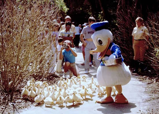 Caption This: A Day at Disney's Fort Wilderness Resort & Campground at Walt Disney World Resort That's Just Ducky