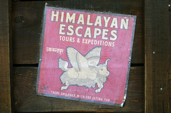 Can You Finish This Sign from Disney's Animal Kingdom?
