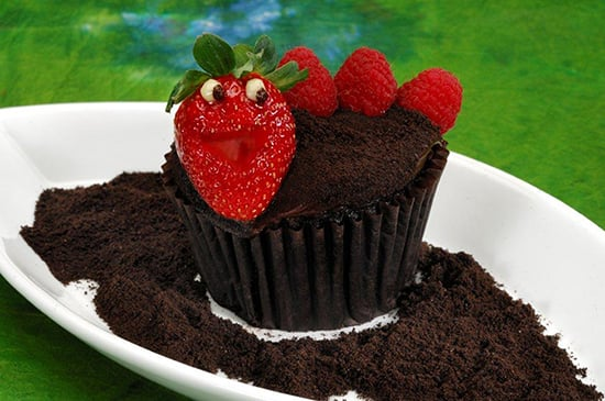 Chocolate Worms & Dirt Cupcake Featuring an Adorable Little Worm Made with a Strawberry and Fresh Raspberries