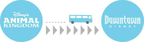 Bus Direct from Disney's Animal Kingdom to Downtown Disney