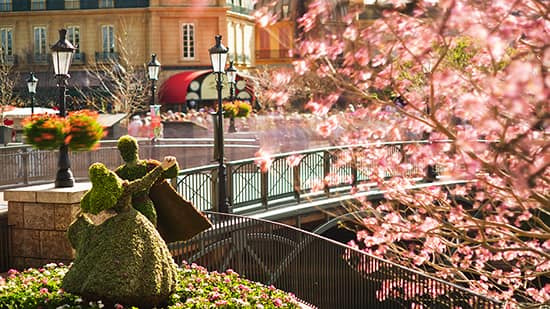 Sign Up for a Chance to Tour the Gardens at the Epcot International Food & Wine Festival