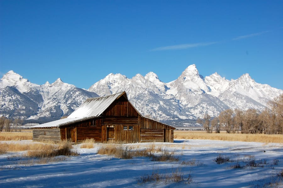 dreaming of a white christmas a wyoming adventure awaits disney