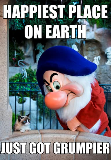 Social Media All-Star Grumpy Cat Shows Her Disney Side at Disneyland Park
