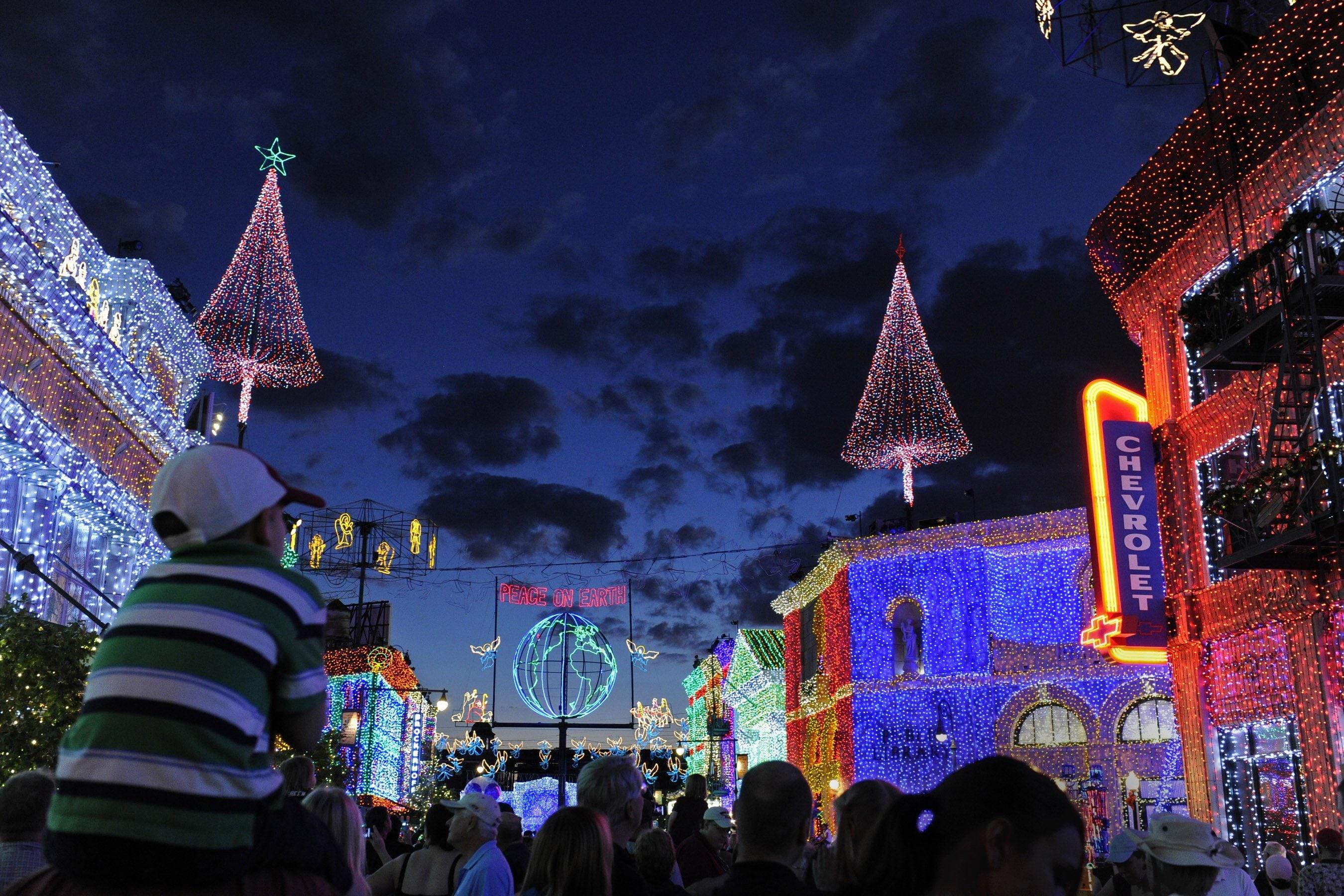 ofl872512 - Disney World Christmas Lights