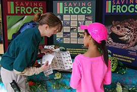 Frogs are Being Celebrated at the Connecting Families with Nature Events at Walt Disney World Resort