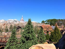 The View From the Top of Seven Dwarfs Mine Train at Magic Kingdom Park