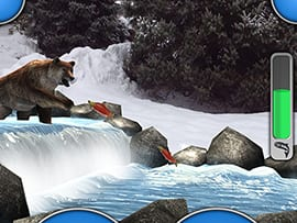 Wildlife Wednesdays: Animals From Disney Parks, Films Come to Life in New Free Disneynature Explore App