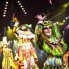 'Festival Of The Lion King' at Disney's Animal Kingdom