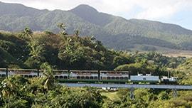 Scenic Railway Port Adventure with Disney Cruise Line