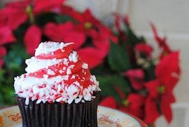Holiday Cupcake from Main Street Bakery at Magic Kingdom Park