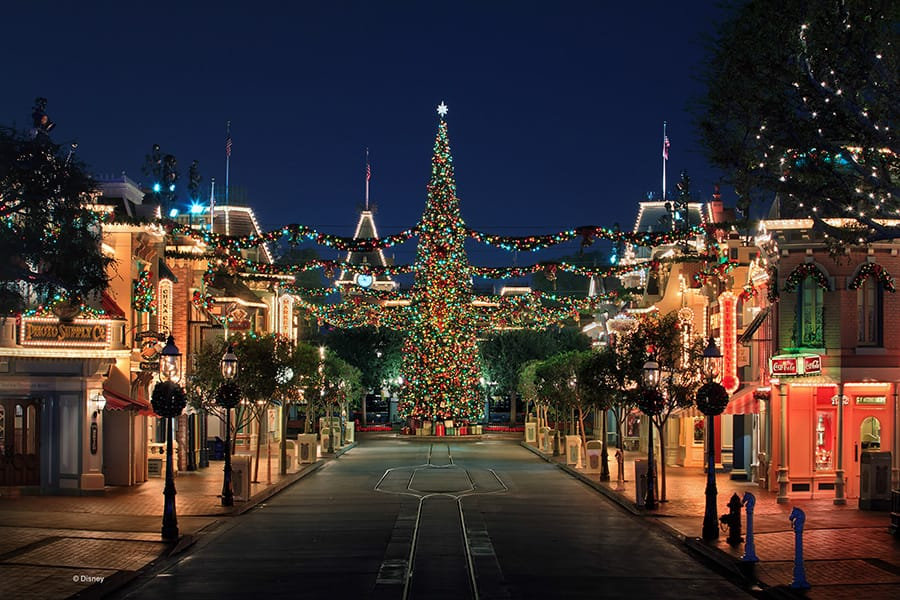 dlrdlr826551 - Disneyland Christmas Decorations