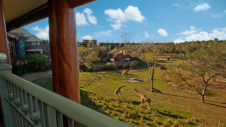 Disney's Animal Kingdom Lodge with views of the wildlife