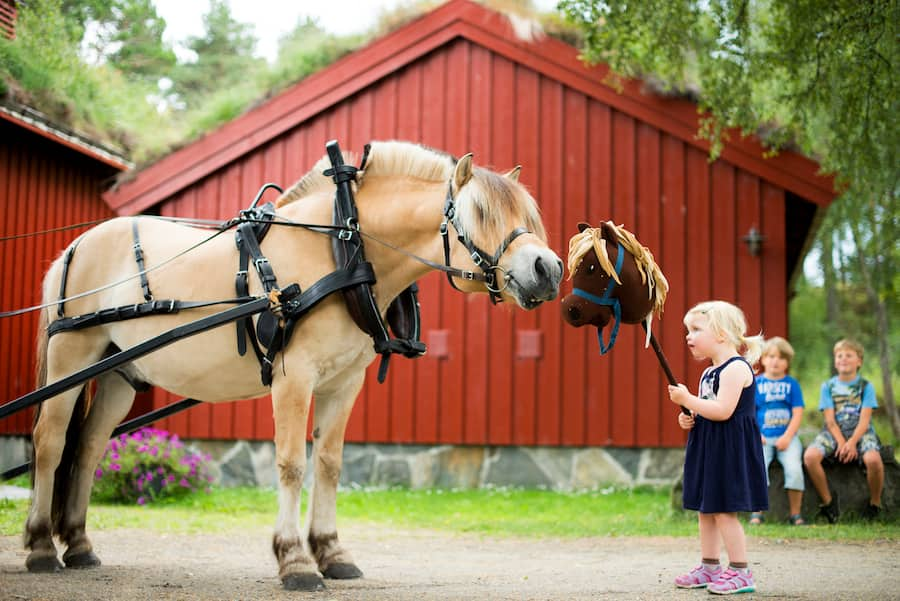 Learn Helpful Norwegian Phrases for Your Adventures in Molde, Norway with Disney Cruise Line