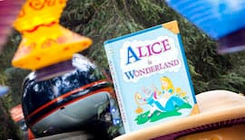 View of Alice in Wonderland from the Disneyland Monorail