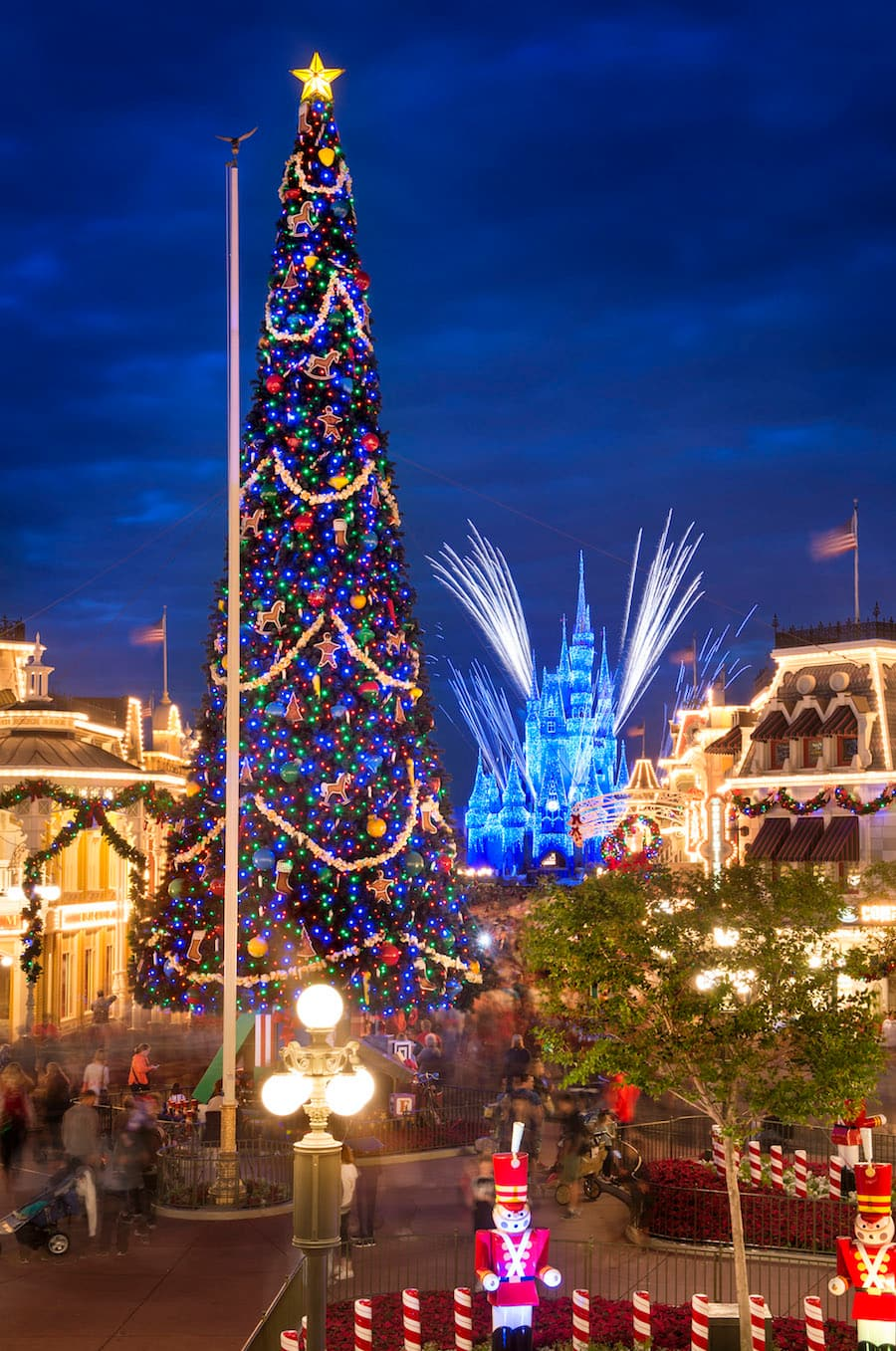 christmas tree at magic kingdom park