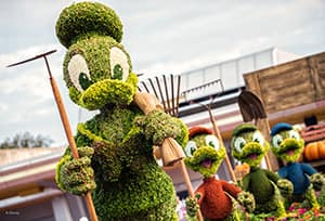 Donald, Huey, Dewey and Louie Topiaries at the Epcot Flower and Garden Festival at Walt Disney World Resort