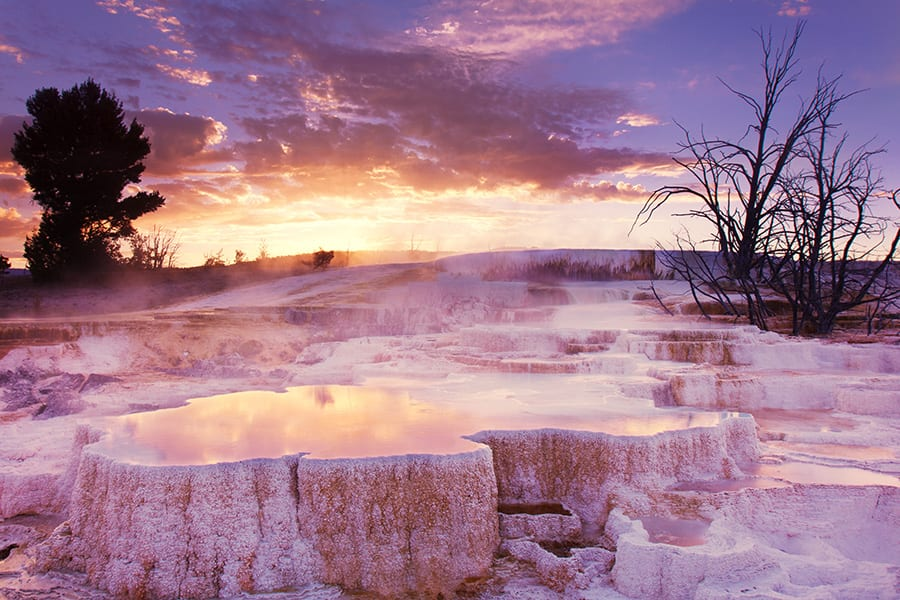 Explore Yellowstone National Park with Adventures by Disney