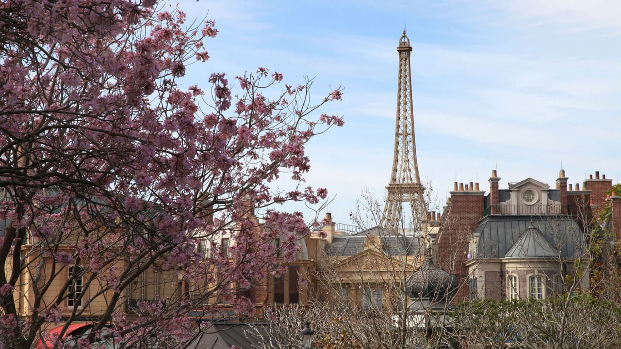 a world showcase of unforgettable shopping at epcot france