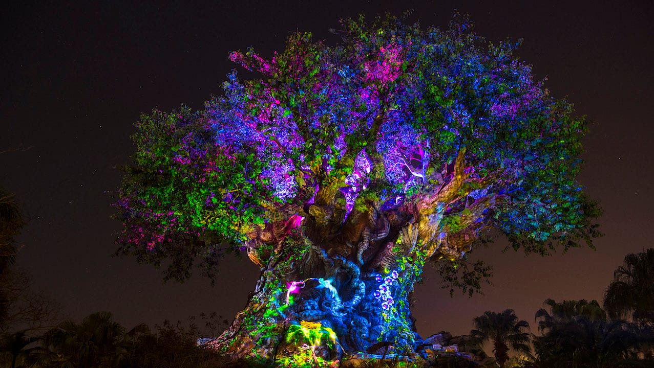 The Tree of Life will begin its nighttime awakenings after the sun goes down on May 27, 2016
