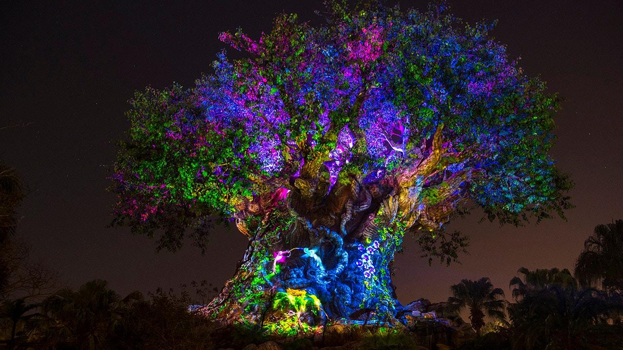 This Week in Disney Parks Photos: Disney's Animal Kingdom at Night