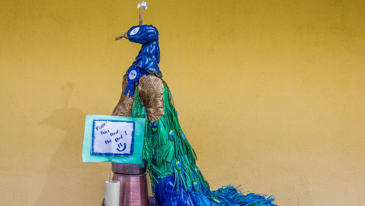 Art Out of Recyclables Titled 'The Peacock' by the Housekeeping team at Disney's Grand Californian Hotel & Spa