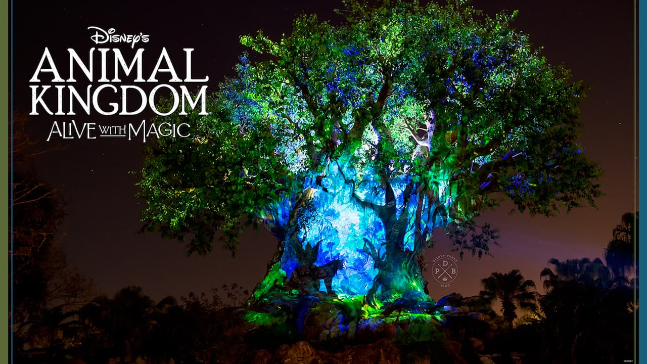 Disneys Animal Kingdom Nighttime Inspired Wallpapers