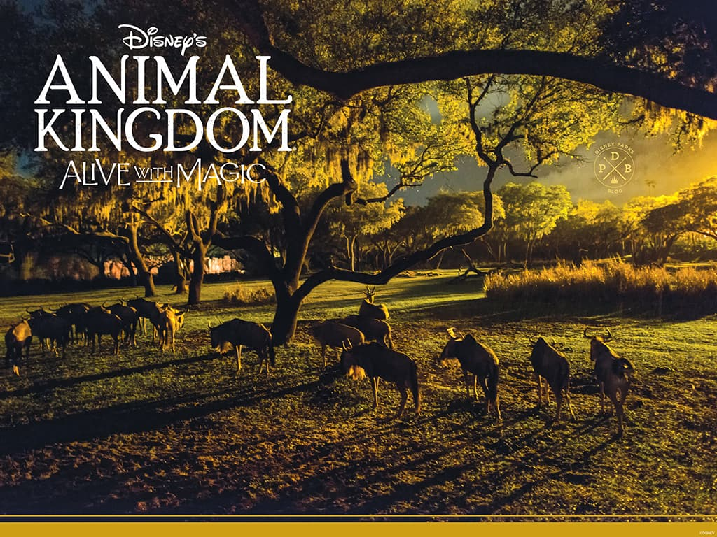 Disney's Animal Kingdom 'Nighttime'-Inspired Wallpapers