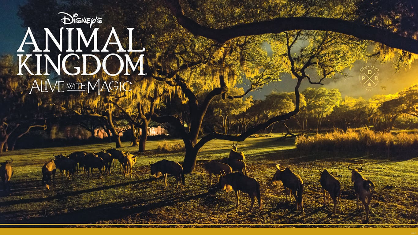 Disney's Animal Kingdom 'Nighttime'-Inspired Wallpaper